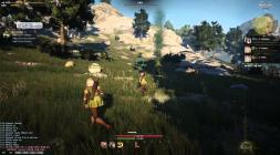 Black Desert - скриншот боёвки с луком